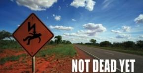Not Dead Yet image courtest Charles Darwin University Art Gallery in Darwin-1